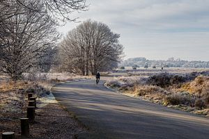 Landschap winter rijp van Anjo ten Kate