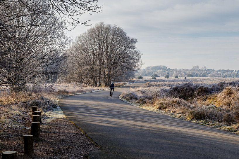 Paysage gelé en hiver sur Anjo ten Kate