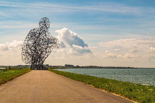 Zittende man kijkend over het Markermeer bij Lelystad