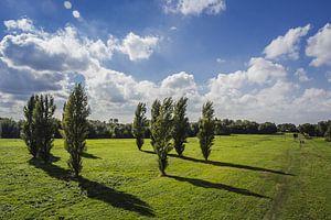 Landschap Delft