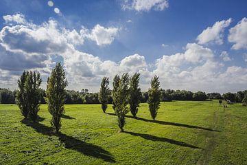 Landschap Delft van hans van dorp