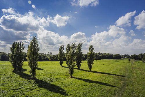 Landschap Delft van