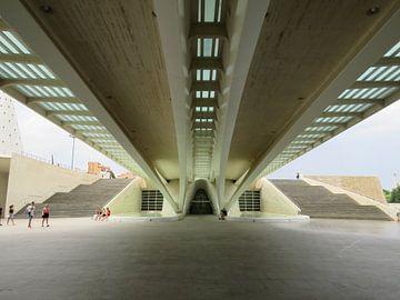 Under the bridge  von Maja van Eijndthoven