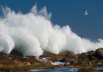 Waves von Marcel van Balken