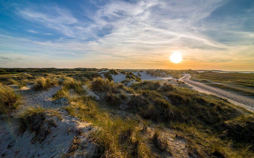 De Nederlandse duinen van David Douwstra
