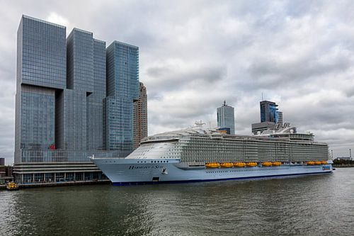 Harmony of the Seas in Rotterdam van