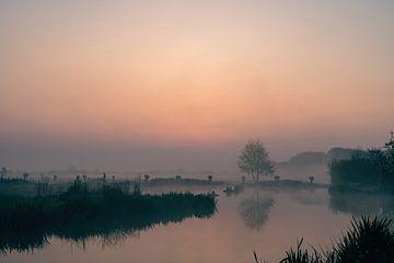 warme mistige ochtend van Tania Perneel