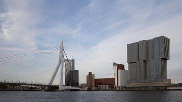 Rotterdam van bart vialle