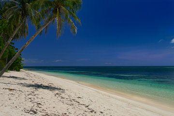 filipijnen, witte stranden en een helder blauwe zee. von Eline Oostingh