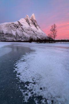 Mooie zonsopkomst met roze kleuren  bij Otertinden in het noorden van Noorwegen. van Jos Pannekoek
