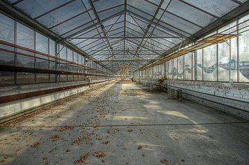 Ecole Labyrinthe 3 van Pascal Lemmens