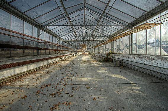 Ecole Labyrinthe 3