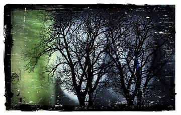 Het donkere bos in de Nacht van Nicky`s Prints