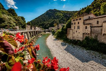 Blick auf den Gebirgsfluss in den französischen Alpen von Fotografiecor .nl