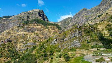 Grün bewachsener steiler Berg auf Madeira mit blauem Himmel im Hintergrund von Hans-Heinrich Runge