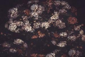 Hedge Roses #2 van Marina de Wit
