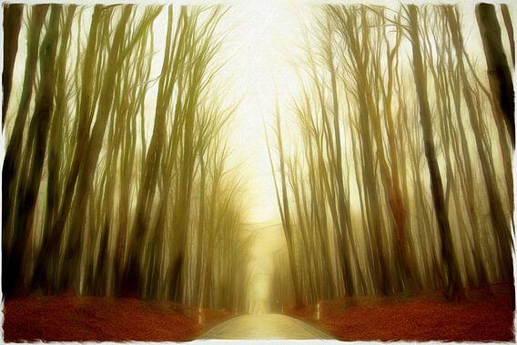 the cloud forest II van Bernd Hoyen