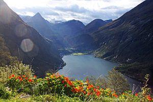 Geiranger Fjord van