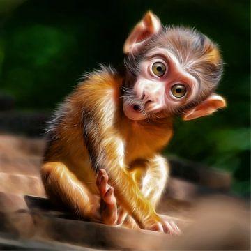 cute baby monkey sur Silvio Schoisswohl