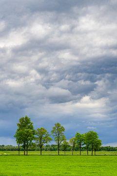 Stormwolken jagen over frisgroene weilanden in de lente van Sjoerd van der Wal