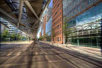 Beatrixkwartier netkous spiegeling landscape van Ron Meiresonne