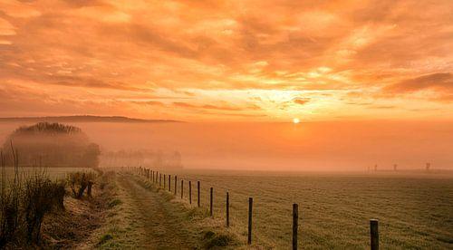 Mistige zonsopkomst in de buurt van Epen in Zuid-Limburg van