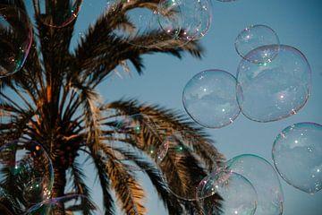 Palmbomen met zeepbellen, bubbles in Valencia Spanje van Lindy Schenk-Smit