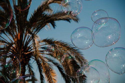 Palmbomen met zeepbellen, bubbles in Valencia Spanje