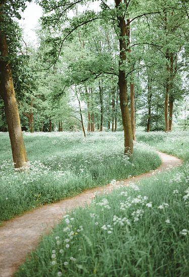 Een Groene Weg