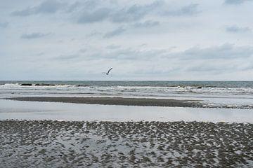 De kust bij Schiermonnikoog van