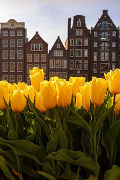Tulpen uit Amsterdam van Thea.Photo