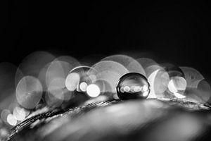 Macro van een waterdruppel in zwartwit met bokeh achtergrond