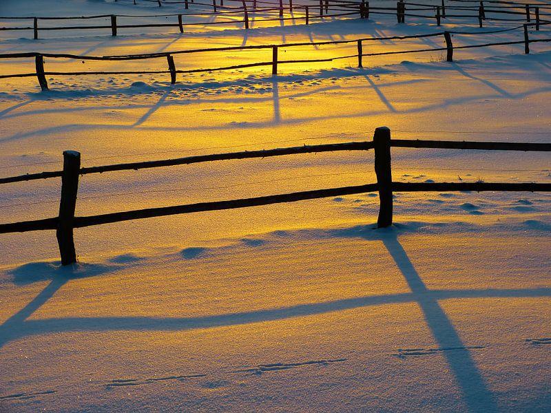 Winter sun van brava64 - Gabi Hampe