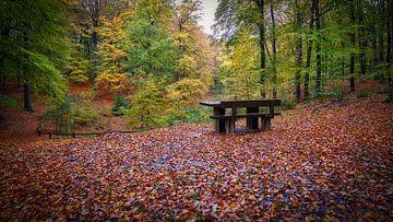 Solse Gat in herfstkleuren