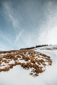 Tegernsee   Winter in den Alpen von Nanda van der Eijk