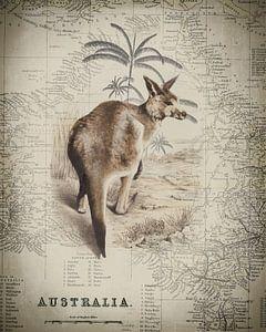 Kangoeroe en de kaart van Australië van Andrea Haase