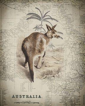 Känguru und Landkarte Australien von Andrea Haase