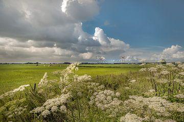 Polderlandschap met Prins Willem-Alexanderbrug van Moetwil en van Dijk - Fotografie