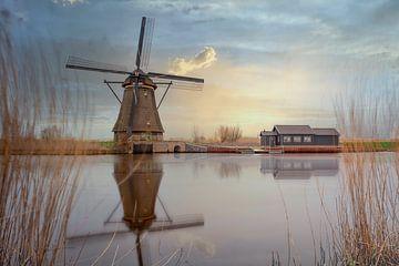 Kinderdijk - Moulin dans les roseaux sur Fotografie Ploeg