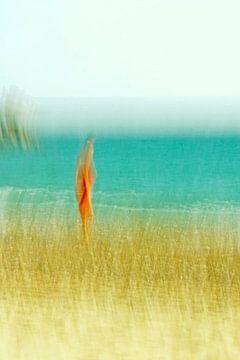 Eenzaam op het strand van Kirsten Warner