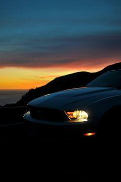 Evening Mustang von Wouter Goedvriend