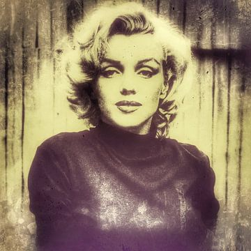 Marilyn 11.2 van Mr and Mrs Quirynen