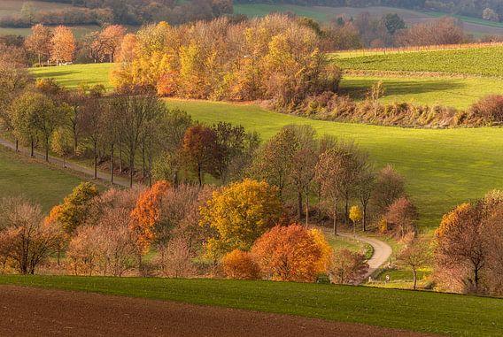 Fromberg in herfstkleuren van John Kreukniet
