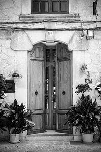 Alte Holztür mit Pflanzen und Blumentöpfen auf Mallorca