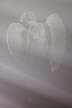 Engel 17 von Jeroen Schipper