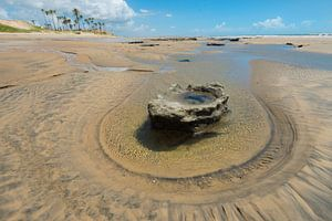 Strand met steen
