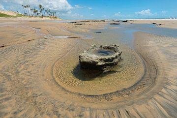 Strand met steen von Leon Doorn
