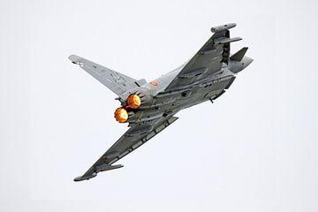 Eurofighter Typhoon EF-2000 met naverbrander van Ramon Berk