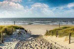 Manier in de duinen naar het strand