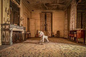Verlassenes Schloss Assassin's Creed, Frankreich